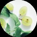 Nutri'Notte-semi d'uva